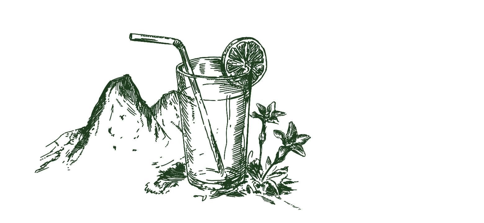 Illustration Kräuterlimonade
